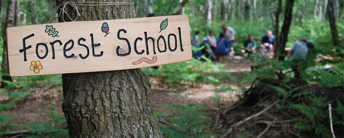 forest_school_2_roydon_wood_fair_2013_by_nat_light_17